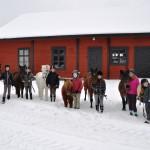Visa häst vid hand 20120216